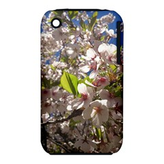 Cherry Blossoms Apple iPhone 3G/3GS Hardshell Case (PC+Silicone)
