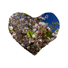 Cherry Blossoms 16  Premium Heart Shape Cushion
