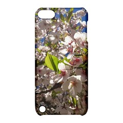 Cherry Blossoms Apple Ipod Touch 5 Hardshell Case With Stand