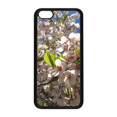 Cherry Blossoms Apple iPhone 5C Seamless Case (Black)