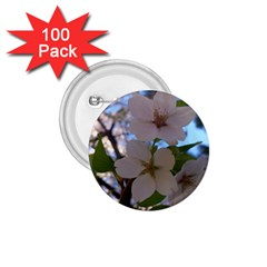 Sakura 1.75  Button (100 pack)