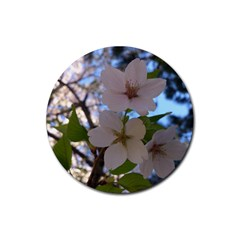 Sakura Drink Coasters 4 Pack (round)