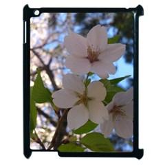 Sakura Apple Ipad 2 Case (black)