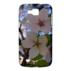 Sakura Samsung Galaxy Premier I9260 Hardshell Case