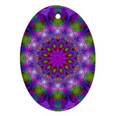 Rainbow At Dusk, Abstract Star Of Light Oval Ornament