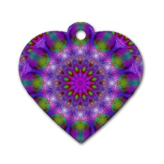 Rainbow At Dusk, Abstract Star Of Light Dog Tag Heart (One Sided)