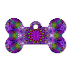 Rainbow At Dusk, Abstract Star Of Light Dog Tag Bone (Two Sided)
