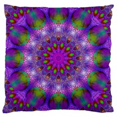 Rainbow At Dusk, Abstract Star Of Light Large Cushion Case (two Sided)