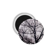 Tree 1.75  Button Magnet
