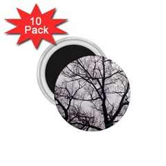 Tree 1.75  Button Magnet (10 pack)