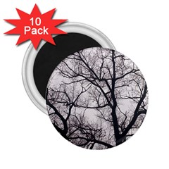 Tree 2 25  Button Magnet (10 Pack)