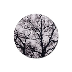 Tree Drink Coasters 4 Pack (Round)