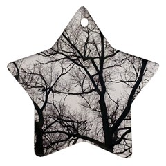 Tree Star Ornament (Two Sides)