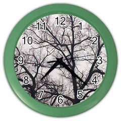 Tree Wall Clock (Color)