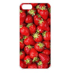 Strawberries Apple Iphone 5 Seamless Case (white)