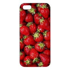 Strawberries Apple Iphone 5 Premium Hardshell Case