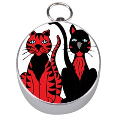 Cool Cats Silver Compass