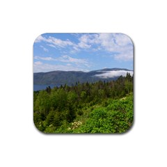 Newfoundland Drink Coasters 4 Pack (Square)