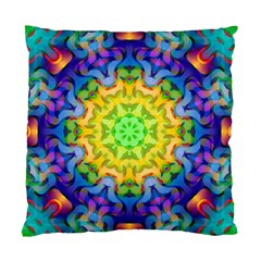 Psychedelic Abstract Cushion Case (Single Sided)