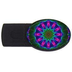 Star Of Leaves, Abstract Magenta Green Forest 2GB USB Flash Drive (Oval)