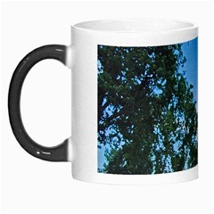 Coming Sunset Accented Edges Morph Mug