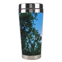 Coming Sunset Accented Edges Stainless Steel Travel Tumbler