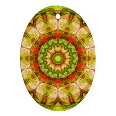 Red Green Apples Mandala Oval Ornament