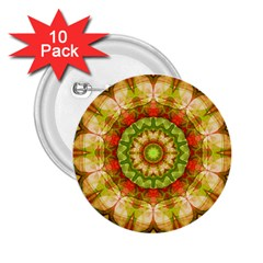 Red Green Apples Mandala 2 25  Button (10 Pack)
