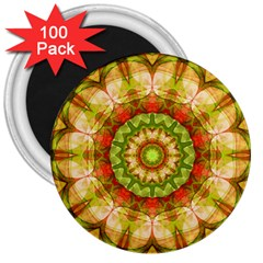 Red Green Apples Mandala 3  Button Magnet (100 pack)