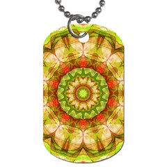 Red Green Apples Mandala Dog Tag (two Sided)