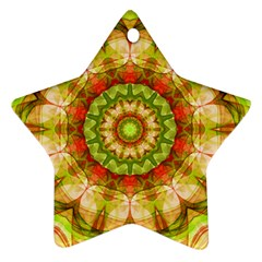 Red Green Apples Mandala Star Ornament (Two Sides)