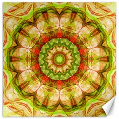 Red Green Apples Mandala Canvas 20  X 20  (unframed)