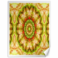 Red Green Apples Mandala Canvas 36  x 48  (Unframed)