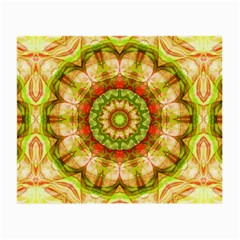 Red Green Apples Mandala Glasses Cloth (Small, Two Sided)