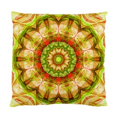 Red Green Apples Mandala Cushion Case (single Sided)