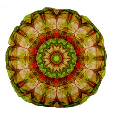 Red Green Apples Mandala 18  Premium Round Cushion