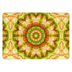 Red Green Apples Mandala Samsung Galaxy Tab 8.9  P7300 Flip Case