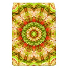 Red Green Apples Mandala Removable Flap Cover (Large)