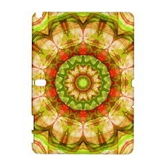 Red Green Apples Mandala Samsung Galaxy Note 10.1 (P600) Hardshell Case
