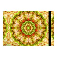 Red Green Apples Mandala Samsung Galaxy Tab Pro 10 1  Flip Case