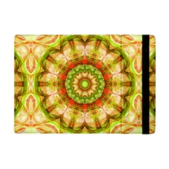 Red Green Apples Mandala Apple Ipad Mini 2 Flip Case