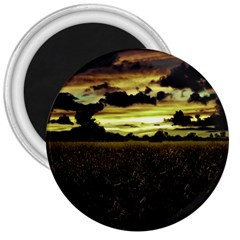 Dark Meadow Landscape  3  Button Magnet
