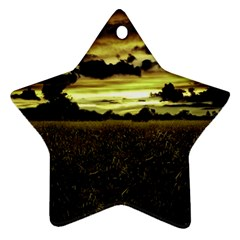 Dark Meadow Landscape  Star Ornament