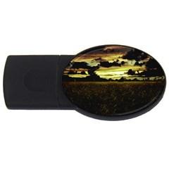 Dark Meadow Landscape  2gb Usb Flash Drive (oval)