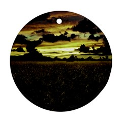 Dark Meadow Landscape  Round Ornament (two Sides)