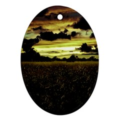 Dark Meadow Landscape  Oval Ornament (Two Sides)