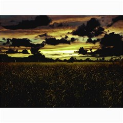 Dark Meadow Landscape  Canvas 12  x 16  (Unframed)