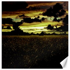 Dark Meadow Landscape  Canvas 16  x 16  (Unframed)