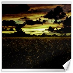Dark Meadow Landscape  Canvas 20  X 20  (unframed)