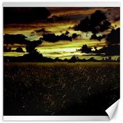 Dark Meadow Landscape  Canvas 20  x 20  (Unframed)